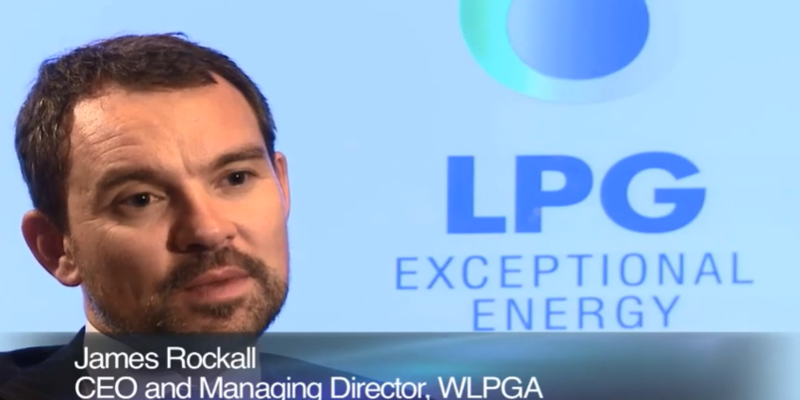 What role does LPG play as a partner to renewable energy?