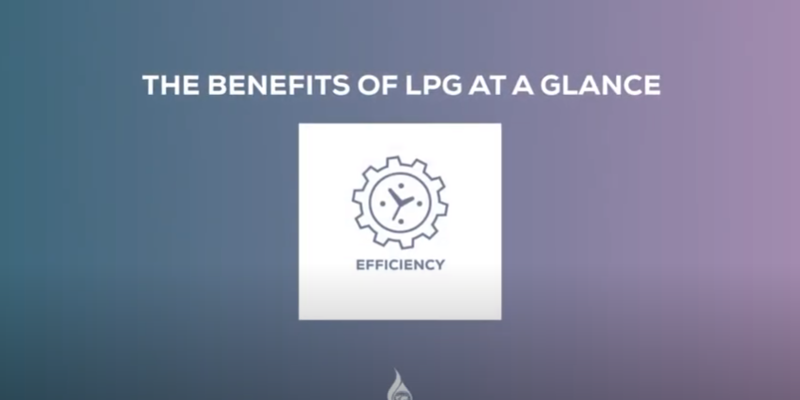 LPG Charter of Benefits on Efficiency