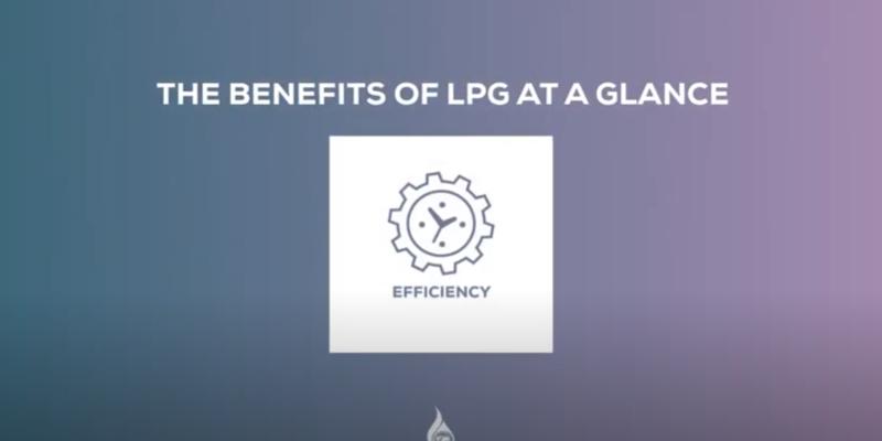 LPG Charter of Benefits on Efficiency