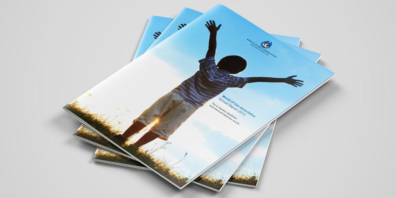WLPGA Annual Report 2013