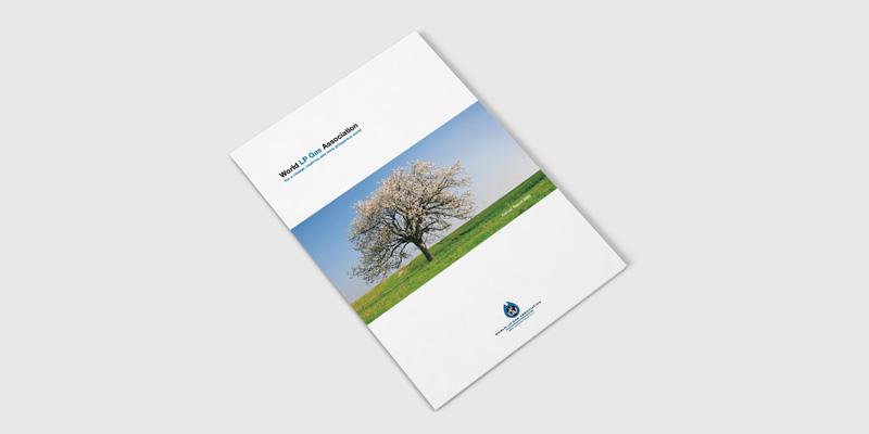 WLPGA Annual Report 2005