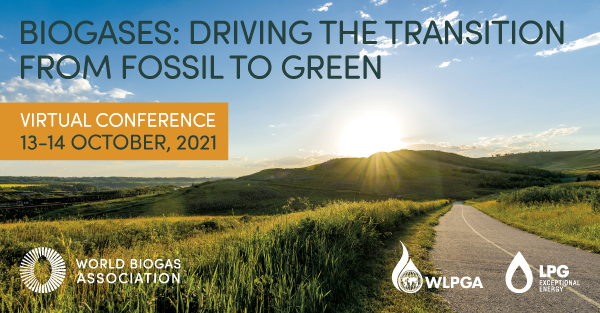 Biogases: Driving the transition from fossil to green